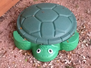 Sandbox turtle