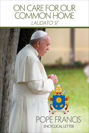 Cover of English edition of Pope Francis' encyclical on environment